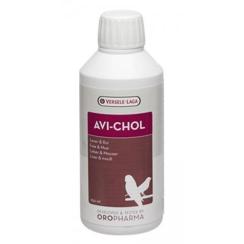 AVI - CHOL