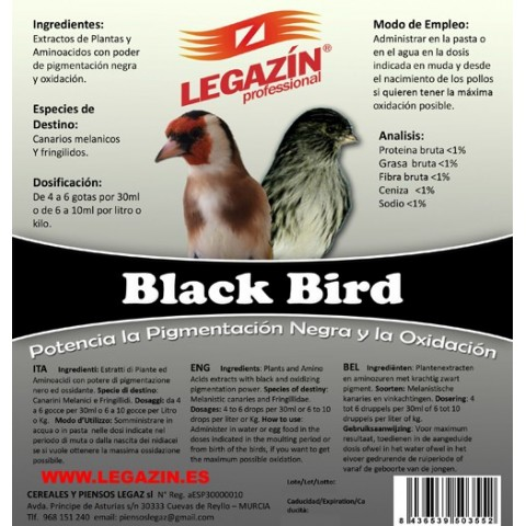 Legazin Black Birds