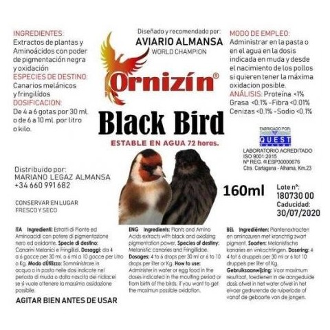Ornizin Black Birds