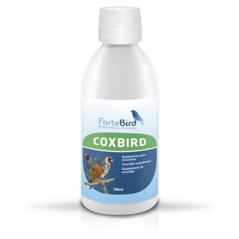 Fortebird Coxbird