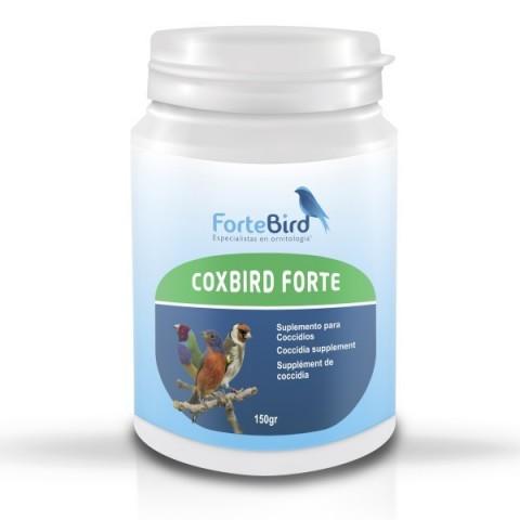 Fortebird Coxbird Forte