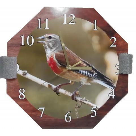 Reloj Pardillo
