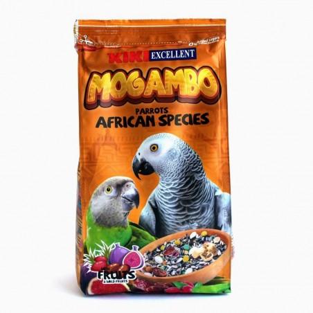KIKI EXCELENT MOGAMBO ESPECIES AFRICANAS