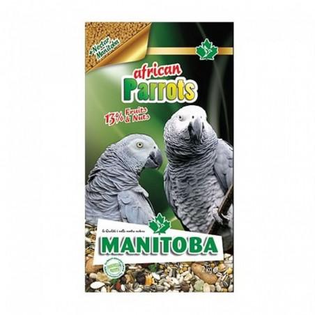 MANITOBA AFRICAN PARROTS MIXTURA LOROS