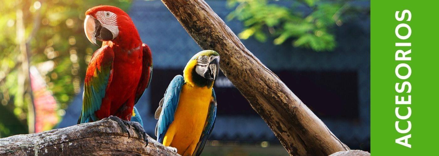 Accesorios para pájaros y accesorios para jaulas. ¡Cómpralos online!