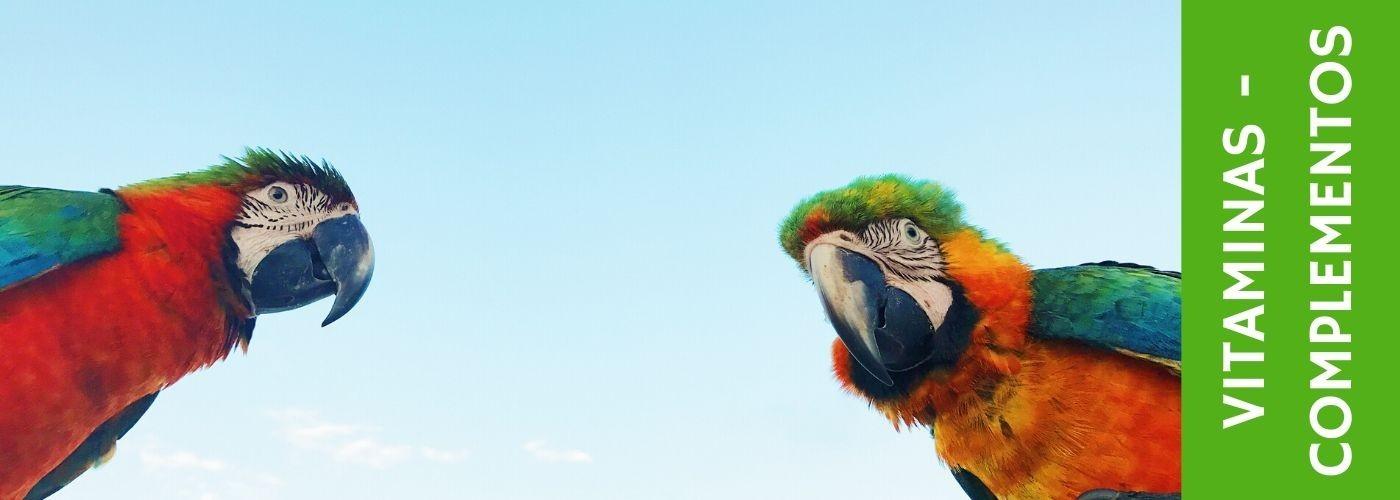 Vitaminas  Pájaros y complementos alimenticios para aves
